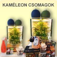 Kaméleon csomagok