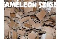 Minden aljzatról -  Kaméleon terráriumba melyik aljzat legyen? - előnézeti képe